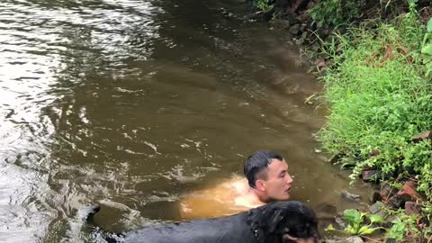 Doggy Rescues Struggling Swimmer