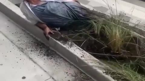 Crazy person buries herself in dirt during protest