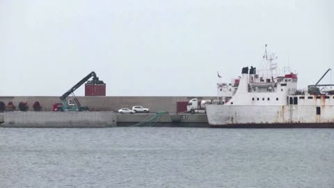 Report calls for killing of cattle on pariah ship