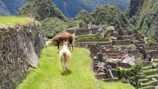 Getting to know Machu Picchu - Video