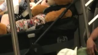 Giant teddy bear inside of a stroller