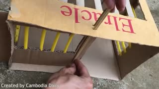Best Bird Trap Machine - How To Install Bird Trap Technology  - Video