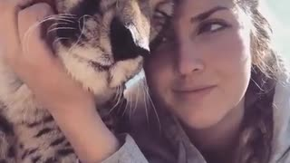 Amazing Love Moments with Cheetah