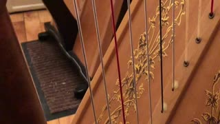 Cat Plays the Harp