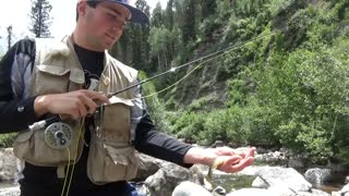 Colorado High Country Trout Fishing 2016