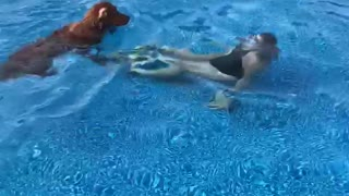 Pup turns into lifeguard when woman goes underwater