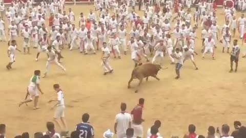 Running with the Bulls Front Flip