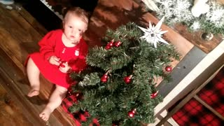 Baby granddaughters first Christmas tree