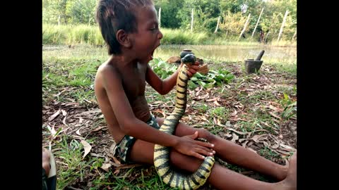 AMAZING KIDS CATCH SNAKE