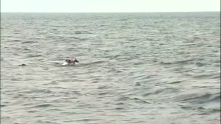 Putin takes a dive - Video