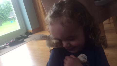 toddler laughing at chick
