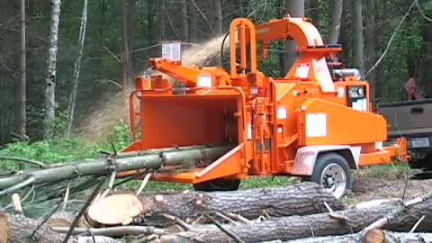 The tree cutter world's fastest