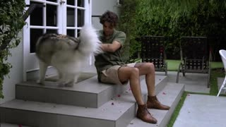 Amazing Man Petting a Dog