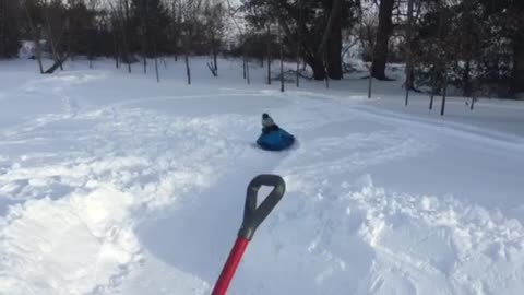 """Dad of the Year"" builds backyard luge course"