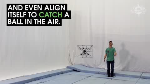This Flying Robot Can Catch And Play Fetch