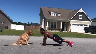 Dog Helps Owner With Morning Workout Routine - Video