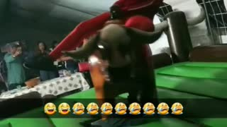 Hairy Ride on a Mechanical Bull - Video