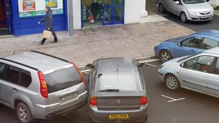 This Driver Deserves A Medal For Terrible Parking Skills  - Video