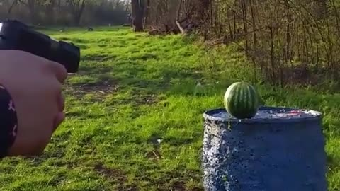 g2research v.s. Watermelon
