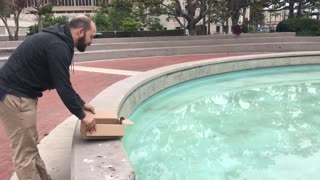 Rescued Duckling Reunited with Parents - Video