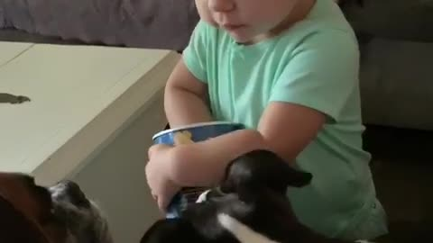 Trying to feed her boxer