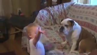 Cute Baby play with dog