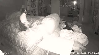 Real Ghost Captured on Camera Disturbing our Cats