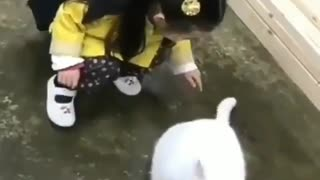 Little Kid playing with Her Cat's Tail