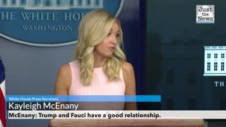 McEnany: Trump and Fauci have a good working relationship