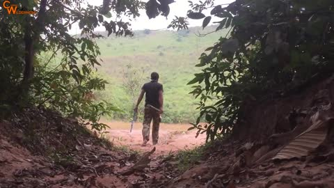 Primitive Technology: Tiger Trap By Technology PVC DIY Trap And Rescue Tiger Back to The Wild