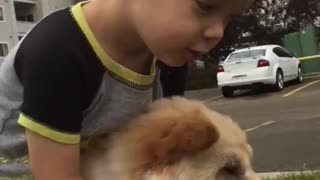 A boy and his dog - Video