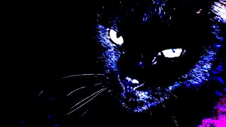 """The Eyes of the Panther"" (Narrated By Jeffrey LeBlanc)"