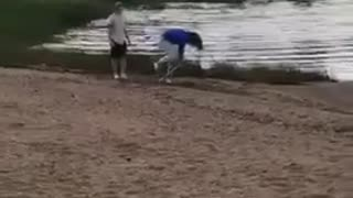 Dizzy bat blue sweater woman falls into lake - Video