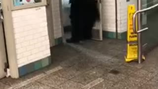 Man in batman costume walks out of restroom - Video