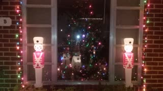 Christmas Display 2016 Nighttime The whole House