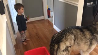 Adorable toddler commanding dog to eat bone  - Video