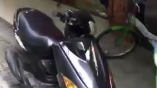 Man on black motorcycle  drives through store window - Video