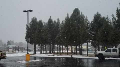 Another November snow