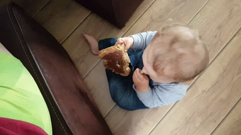 Baby thief stealing food from plate