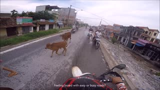 Motorbike Tours For Novice Rider On Dirt Bikes In Vietnam - www.vietnamoffroad.com - Video