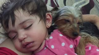 Dog cuddles with sleeping baby