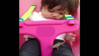 Toddler Girl Plays With Lizard On Swingset