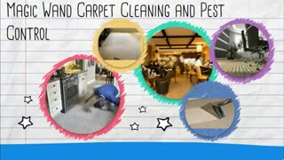 commercial pest control brisbane - Video