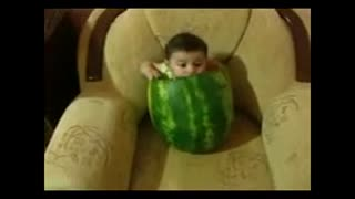 little baby in big watermelon - Video