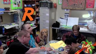 Sullivan The Therapy Dog Makes Christmas Movie With Inclusion Films - Video