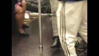 Subway Mouse Startles Commuters