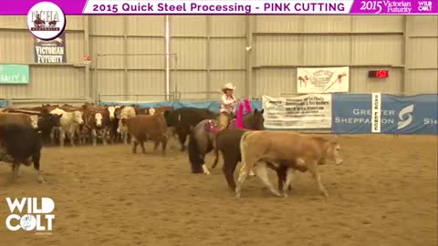 No Bridle? No Problem! Bridless Pink Cutting For Cancer