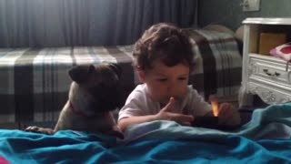 Cute dog and adorable baby playing together - Video