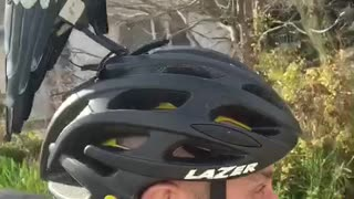 Magpie Call Keeps Cyclist Safe From Being Swooped