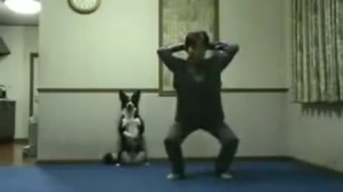 Dog Doing Squats With His Owner, Leg Day !